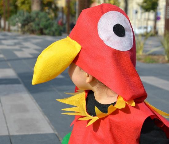 capuche-perroquet-deguisement-2doigstdidee
