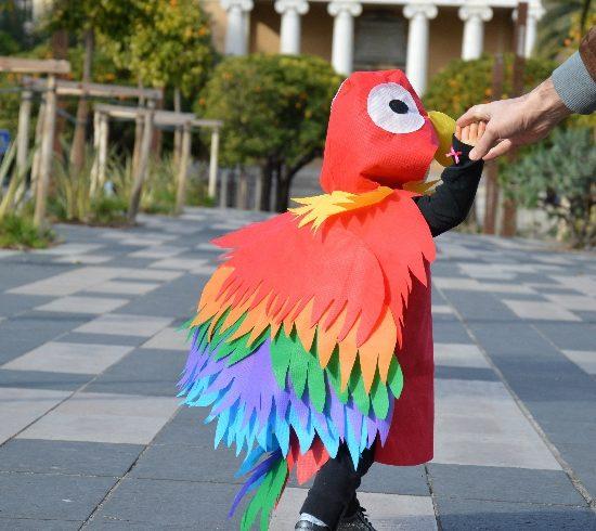 Mon bel Ara de carnaval : déguisement