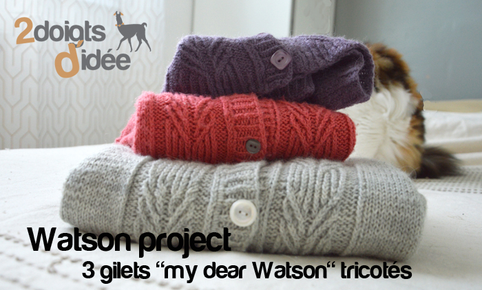 watson-project-2doigtsdidee